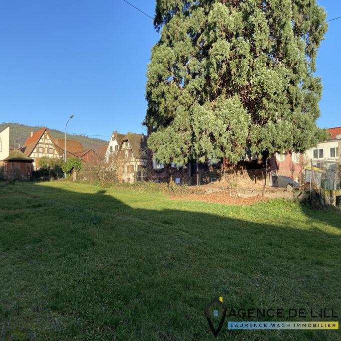 Offres de vente Terrain Dambach-la-Ville (67650)