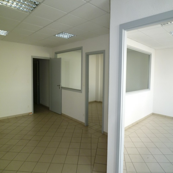 Location Immobilier Professionnel Local commercial Sélestat (67600)